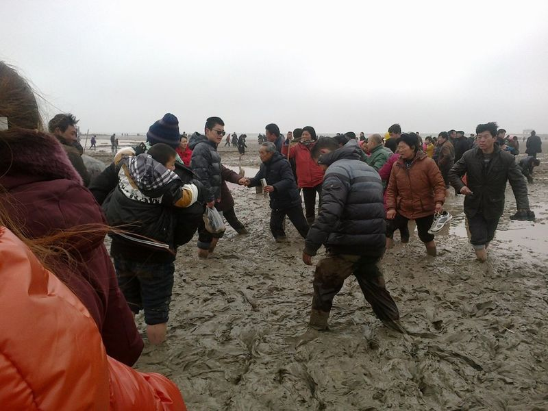 Chinese people gathered around several beached whales.