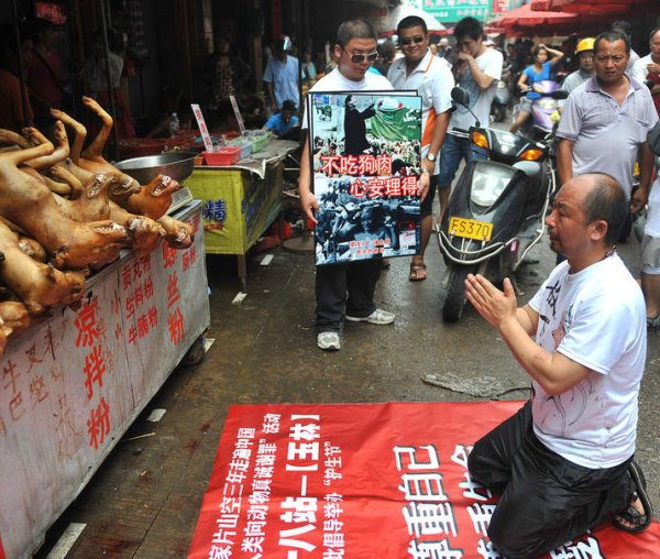 Non-Chinese Take To Twitter To Stop Dog Meat Festival