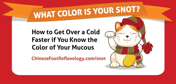 What Color Is Your Snot? - Wind Cold vs Wind Heat Infographic