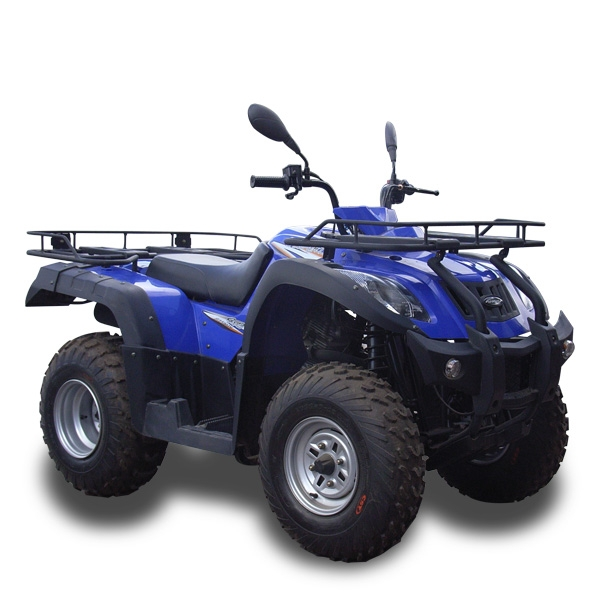 DIAGRAM Yamaha Timberwolf 250 4x4 Wiring FULL Version HD Quality