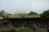 Best FastPass+ Options at Disney's Animal Kingdom