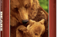 Disneynature Bears Available on Blu-ray and DVD August 12, 2014