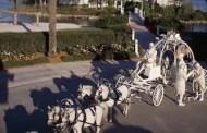 Top 10 Ways to Have Cinderella-Inspired Fun at  Walt Disney World Resort