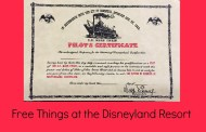 Things You Can Get for Free at the Disneyland Resort