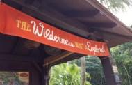 7 Ways to Make a Trip to Walt Disney World Educational