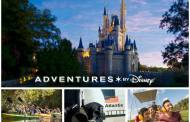 The Ultimate VIP Walt Disney World Experience