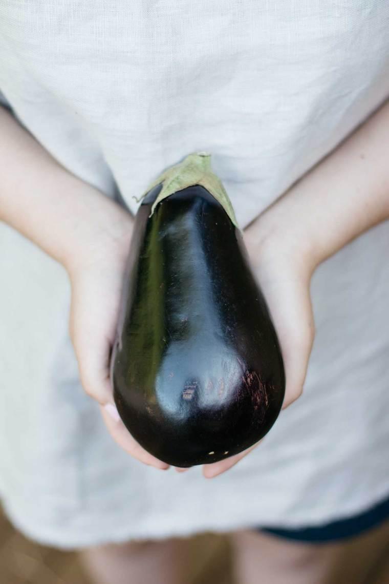 Nasu Dengaku - Miso Glazed Eggplant | Chopstick Chronicles