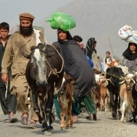 How to help Waziristan IDPs?