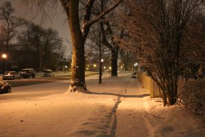 snowday5_s.jpeg