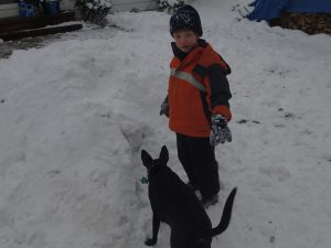 Will and Shadow in the Snow