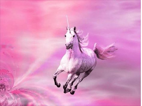 Cute Horse Wallpapers Pink Unicorns And Other Nonsense From Atheists Christian