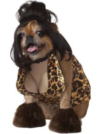 Dog Halloween Costumes Uk