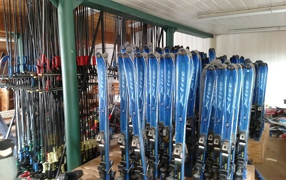 skis small