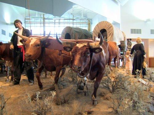 Oregon Trail Interpretive Center exhibit