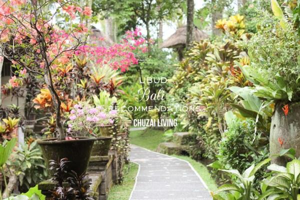 Ubud Bali Recommendations