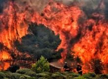 Incendi, agricoltori sentinelle del territorio