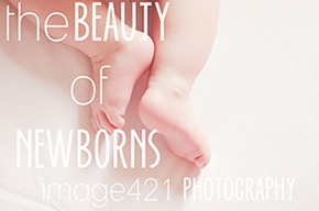 Newborn Photography in Sydney