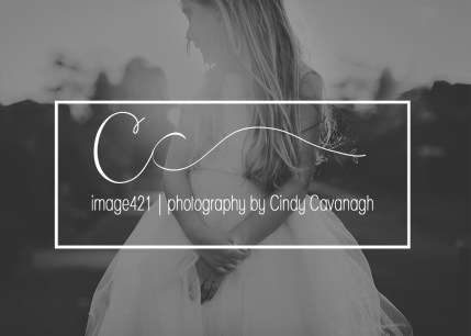 image421c