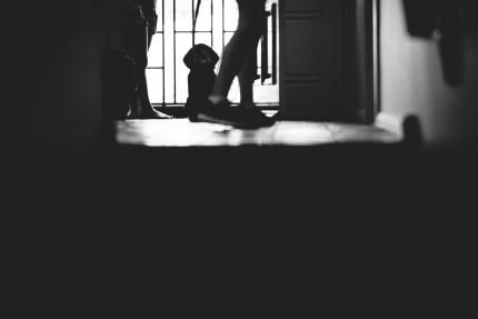 sydney photographer - dog waiting at front door