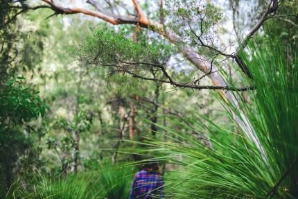 family photography sydney \ girl walking in bush