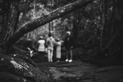 photographerssydney\family in the bush at Bobbin Head