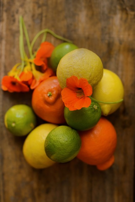 Sydney Still Portraits: Lemons, Oranges and Limes.