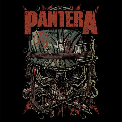 Confederate Flag Wallpaper Hd Pantera Skull Logo Www Pixshark Com Images Galleries