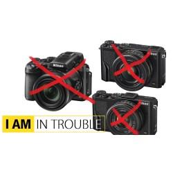 Small Crop Of Nikon Dl24 500