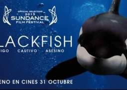 Crítica de Blackfish
