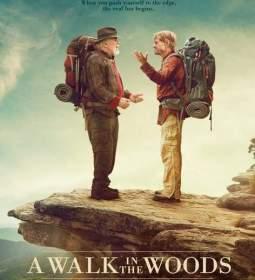 Póster de Un paseo por el bosque