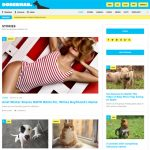 Doberman WordPress Template