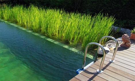 Addio cloro, ora anche la piscina è green