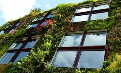 SUONO Wall up, il Giardino Verticale fonoassorbente ad Energethica