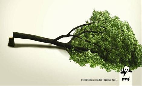 """Appello del WWF: Risorse naturali """"in rosso"""""""