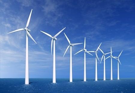 Le turbine eoliche aiutano l'ecosistema, come?!