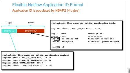 Template Timeout Rate Netflow