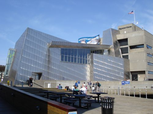 The New England Aquarium   Boston, Massachusetts   large aquarium with