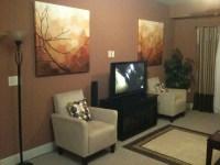 Bachelor needs advice on living room paint color - Home ...