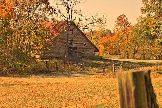 Kentucky Fall Wallpaper Rural Ky Photo Quot Sticky Quot Henderson Corbin Tornado Bars