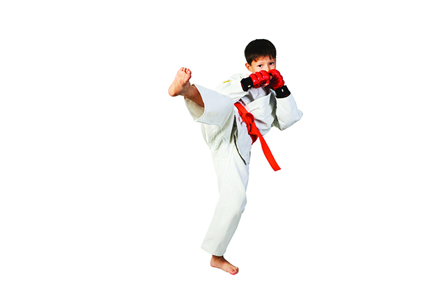 The Benefits of Martial Arts for Kids - NYMetroParents