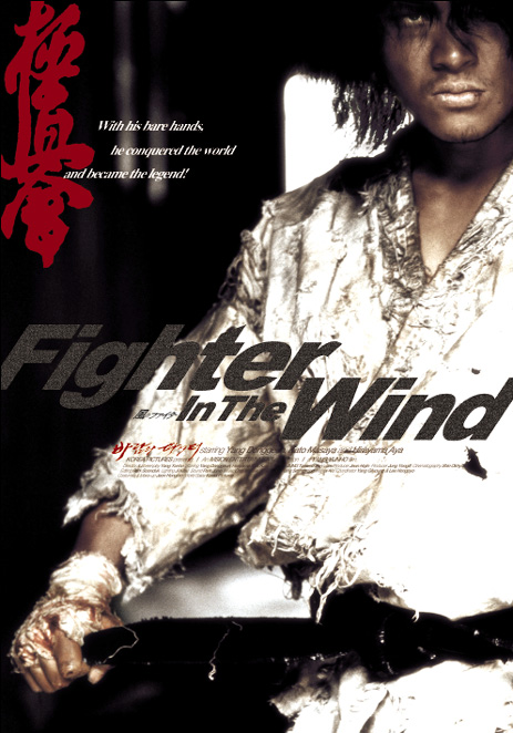 Risultati immagini per Fighter in the Wind