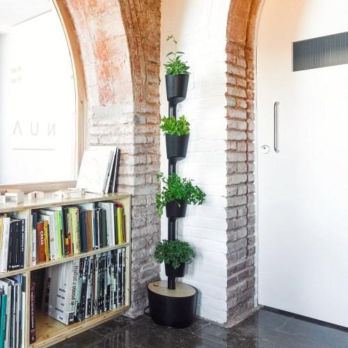 Medium Of Indoor Vertical Gardens