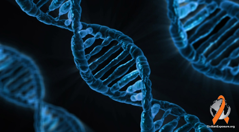 Can Contamination Pose Multi-Generational Concerns Via DNA Damage?