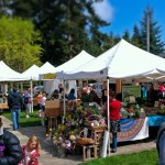 Farmers Market, Bainbridge Island
