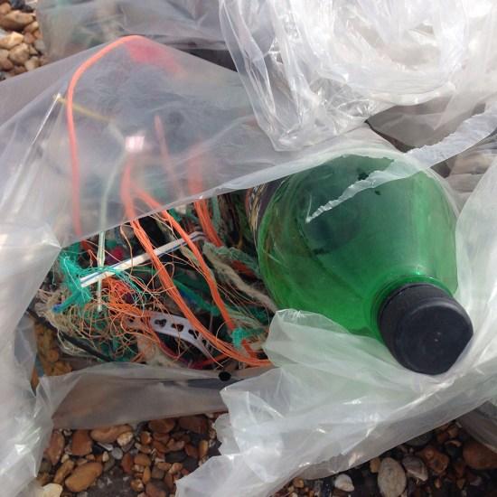 Big Spring Beach Clean 3