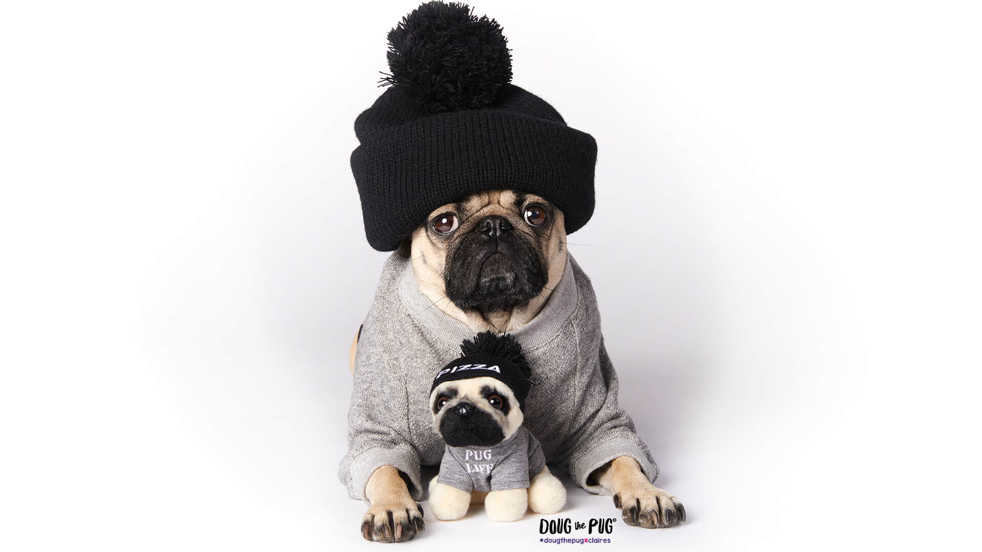 Cute Wallpapers For Iphone 5c Doug The Pug 169 Claire S Us