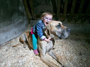 Three-year-old Brianna, who suffers from epilepsy, at her home in Killaloe with her Great Dane Charlie. Photograph by Arthur Ellis.