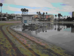 The effects of a king tide. Photo credit: Alyssa Newton Mann