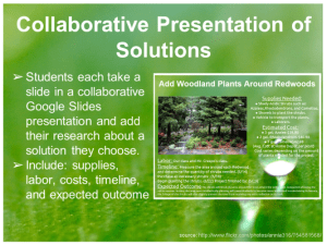Figure 1: Students create a collaborative Google Slide presentation of their research on solving the need to add woodland plants around water-stressed redwood trees.