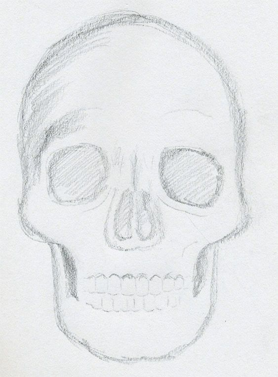 Best 25+ Skull sketch ideas on Pinterest Skull drawings, Chest - photography copyright release form